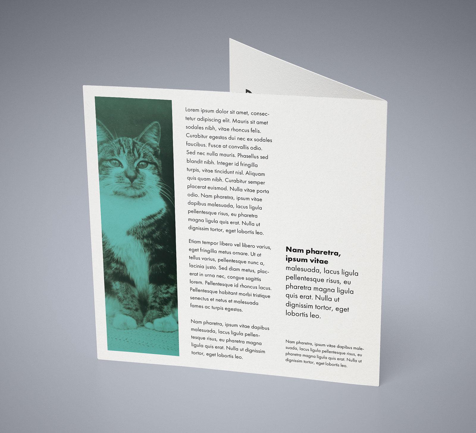 Free-Square-Bi-Fold-Brochure-Mockup-PSD