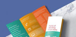 Free-Tri-Fold-Brochure-Mockup-PSD-File