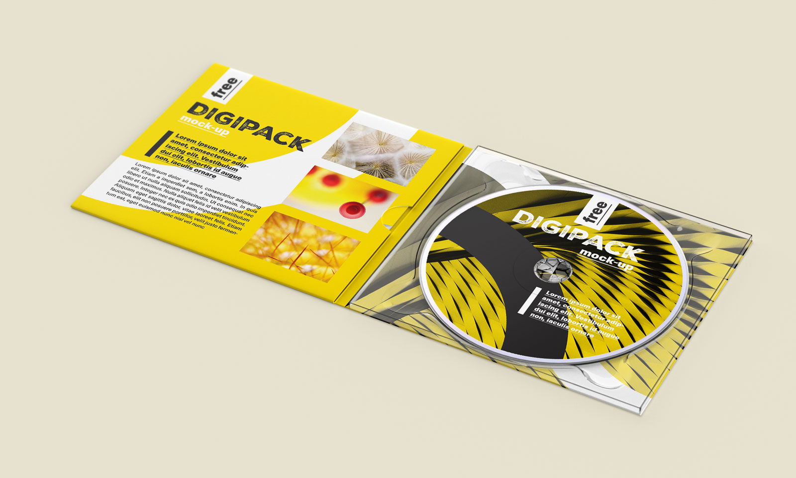 Free-CD-Disc-DVD-Case-Digipack-Mockup-PSD-5