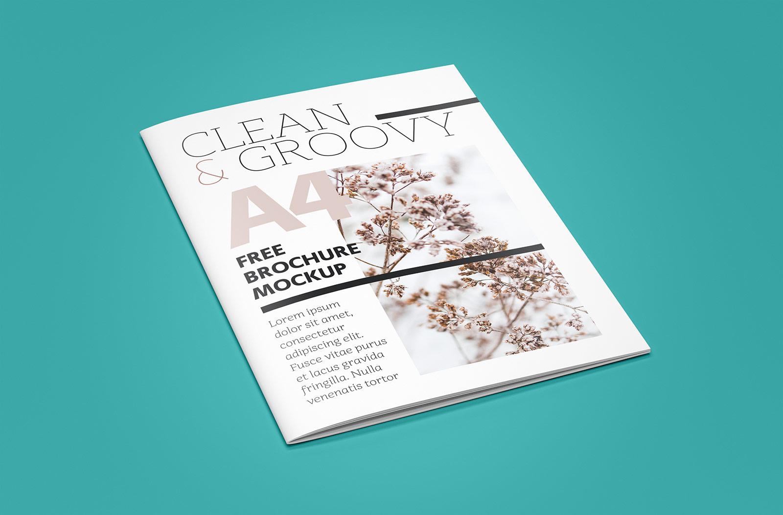 Free-Magazine-Mockup-PSD (1)