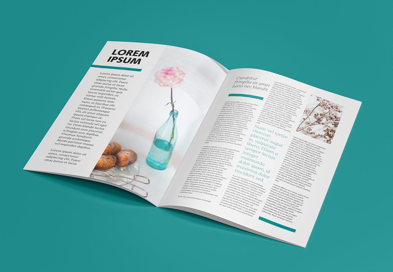 Free-Magazine-Mockup-PSD (3)