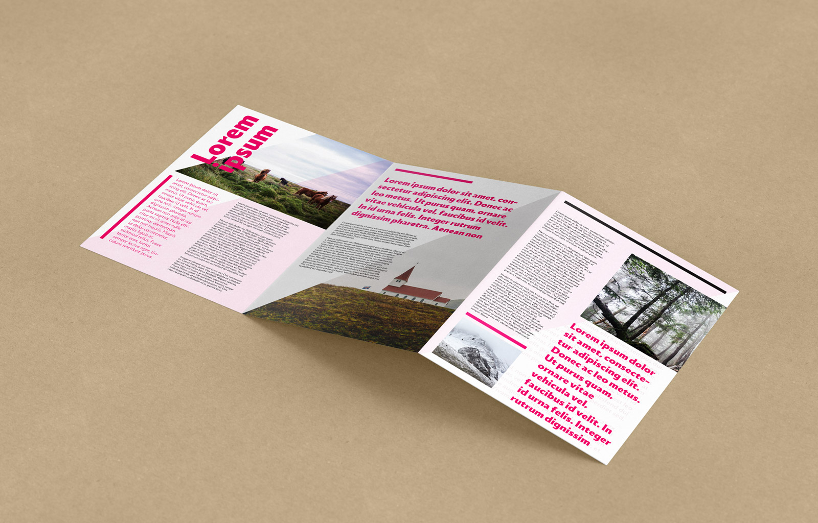 free tri fold a4 brochure mockup psd good mockups