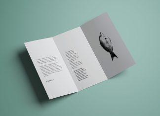 Free-Tri-Fold-Brochure-Mockup-PSD-Template (1)