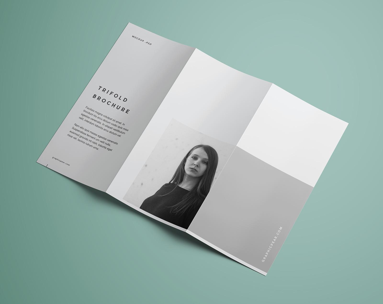 Free-Tri-Fold-Brochure-Mockup-PSD-Template (2)