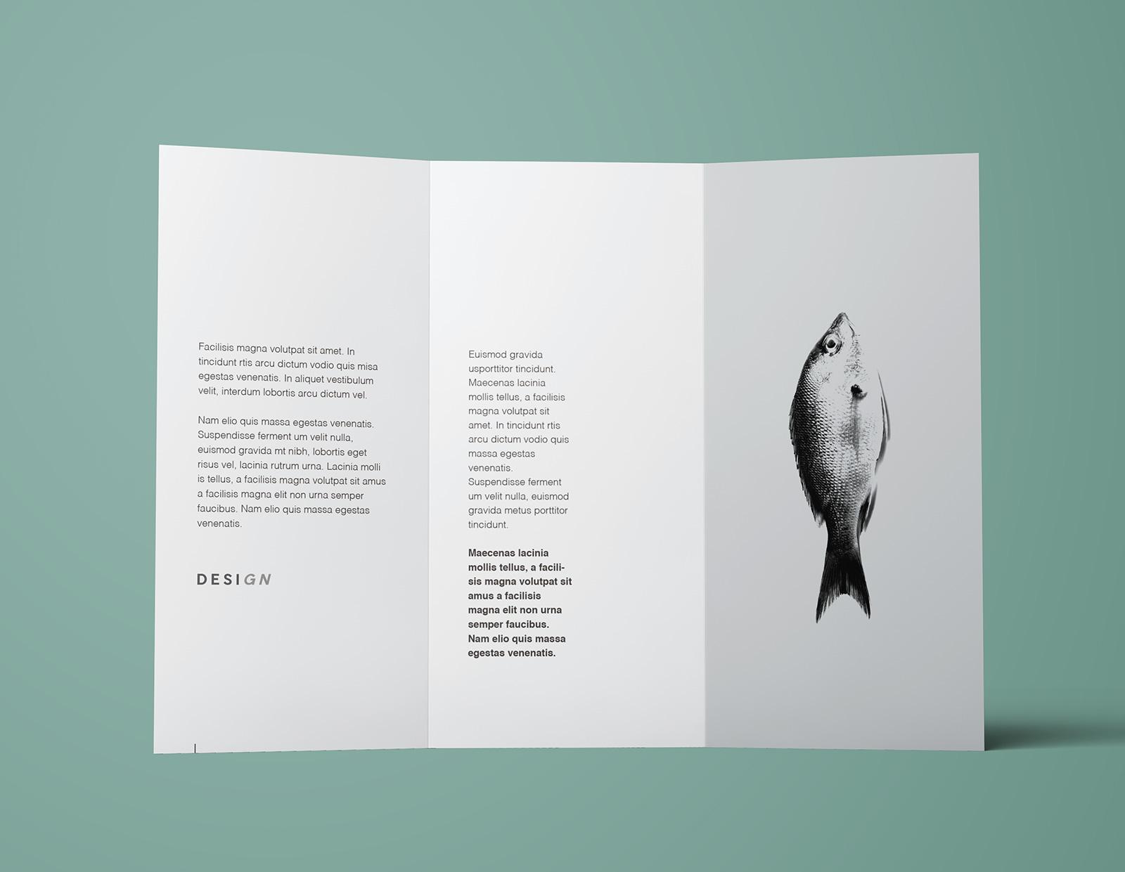 Free-Tri-Fold-Brochure-Mockup-PSD-Template (4)