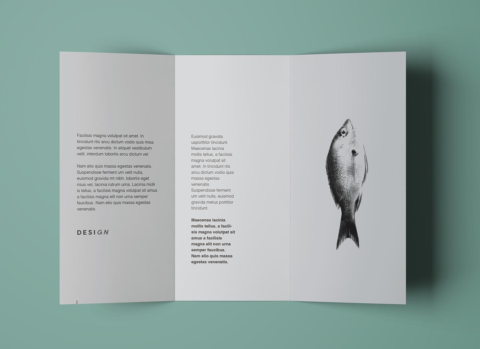 Free-Tri-Fold-Brochure-Mockup-PSD-Template (5)