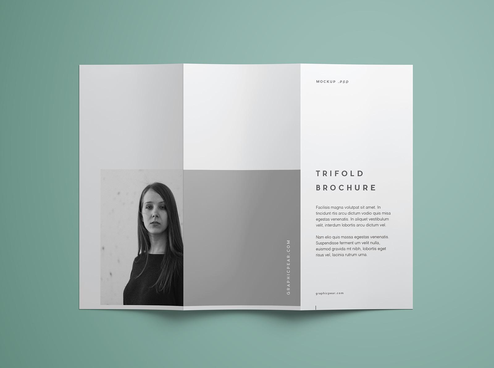 Free-Tri-Fold-Brochure-Mockup-PSD-Template (7)