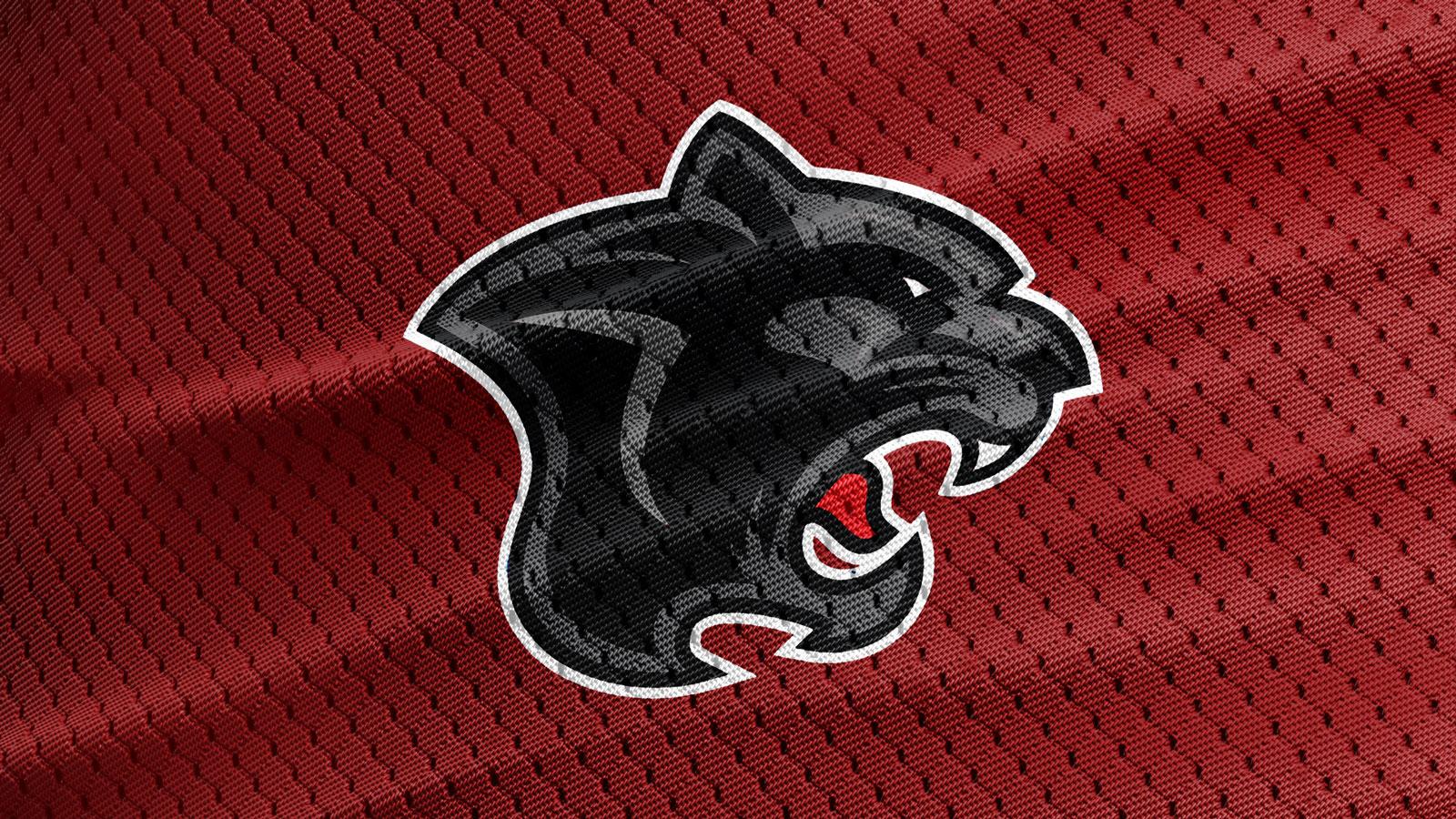 Free-Sports-Jersey-Texture-Logo-Mockup-PSD-3