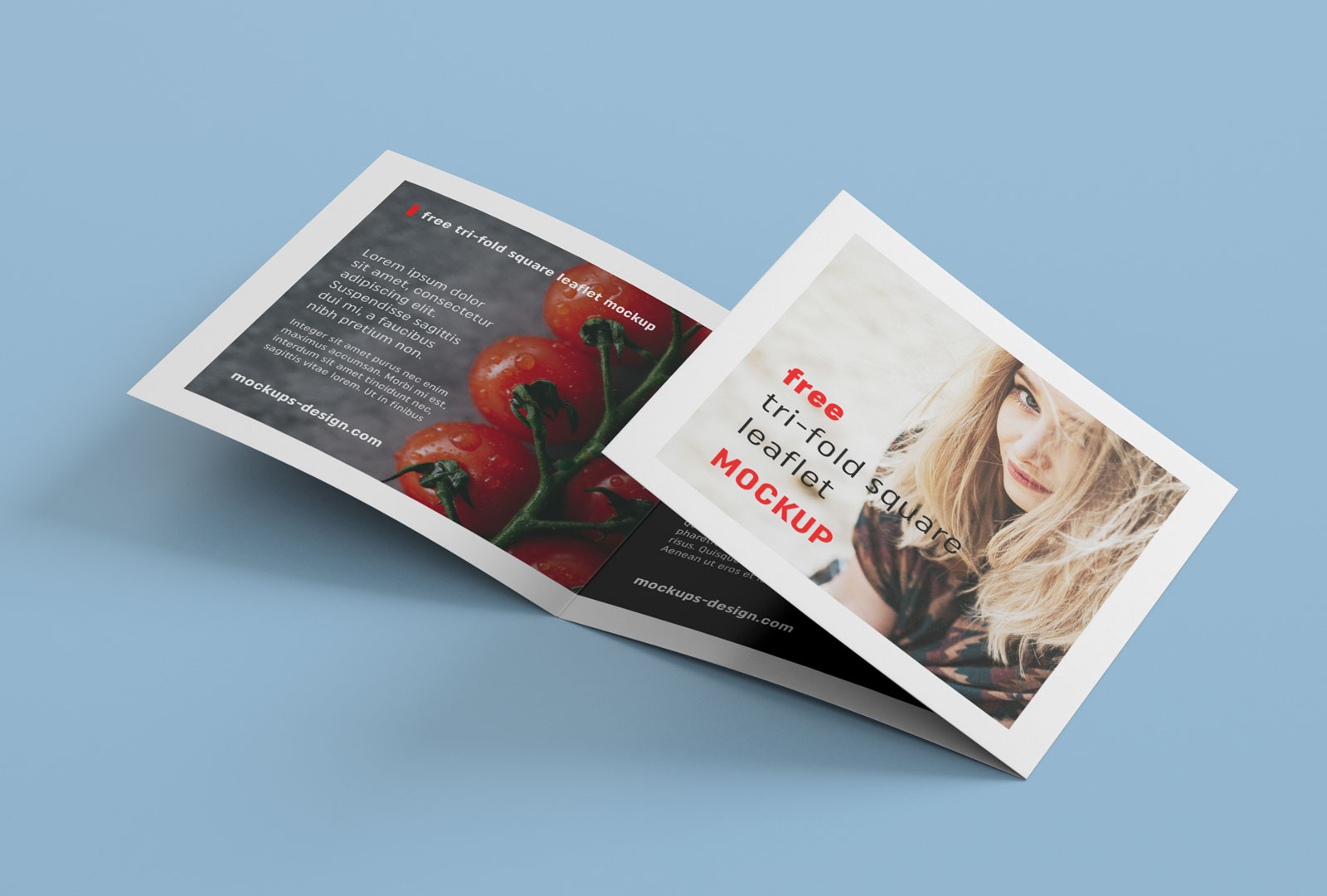 free tri fold square brochure mockup psd file 1