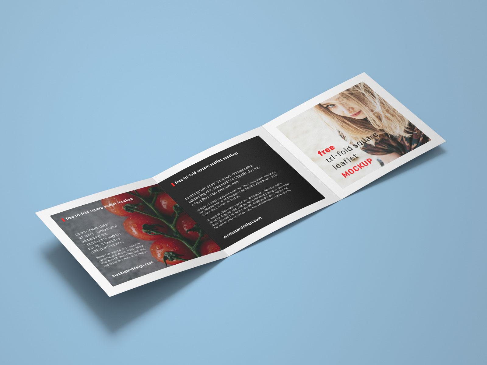 Free Tri-Fold Square Brochure Mockup PSD File (3)