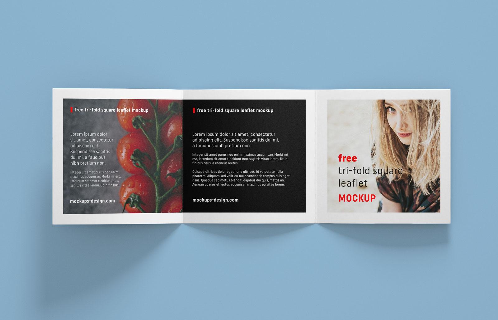 Free Tri-Fold Square Brochure Mockup PSD File (4)