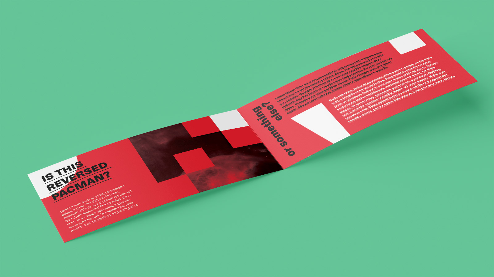 Free-DL-Size-Center-Fold-Brochure-Leaflet-Mockup-PSD-Set-3