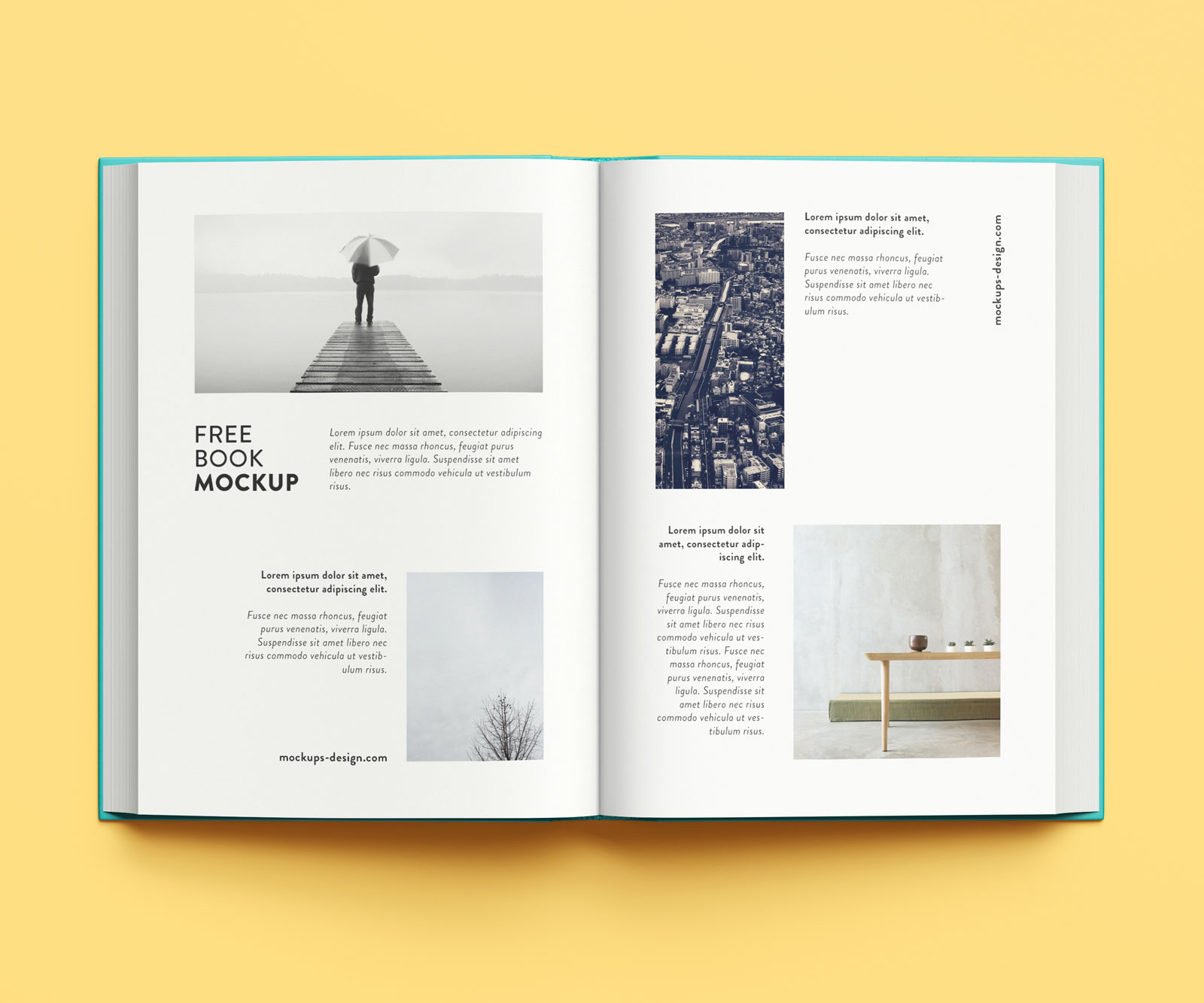 Free-Premium-Thick-Book-Mockup-PSD-5
