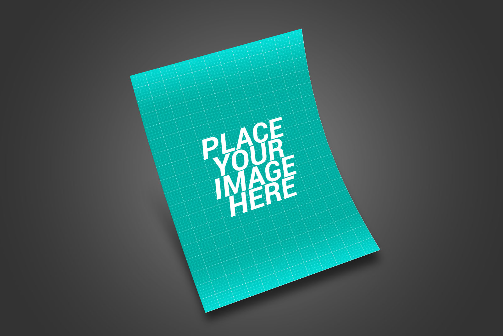 Flyer Free Mockup PSD (1)
