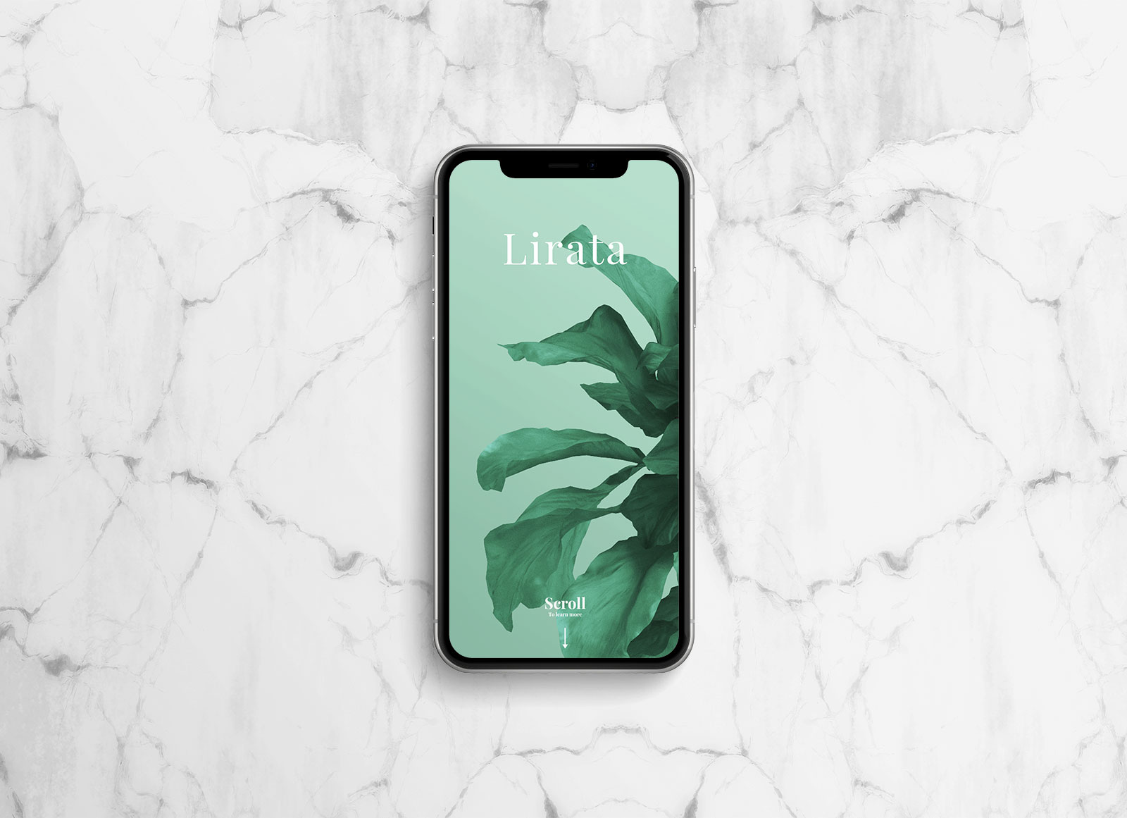 Free-Fully-Customizable-iPhone-X-Mockup-PSD