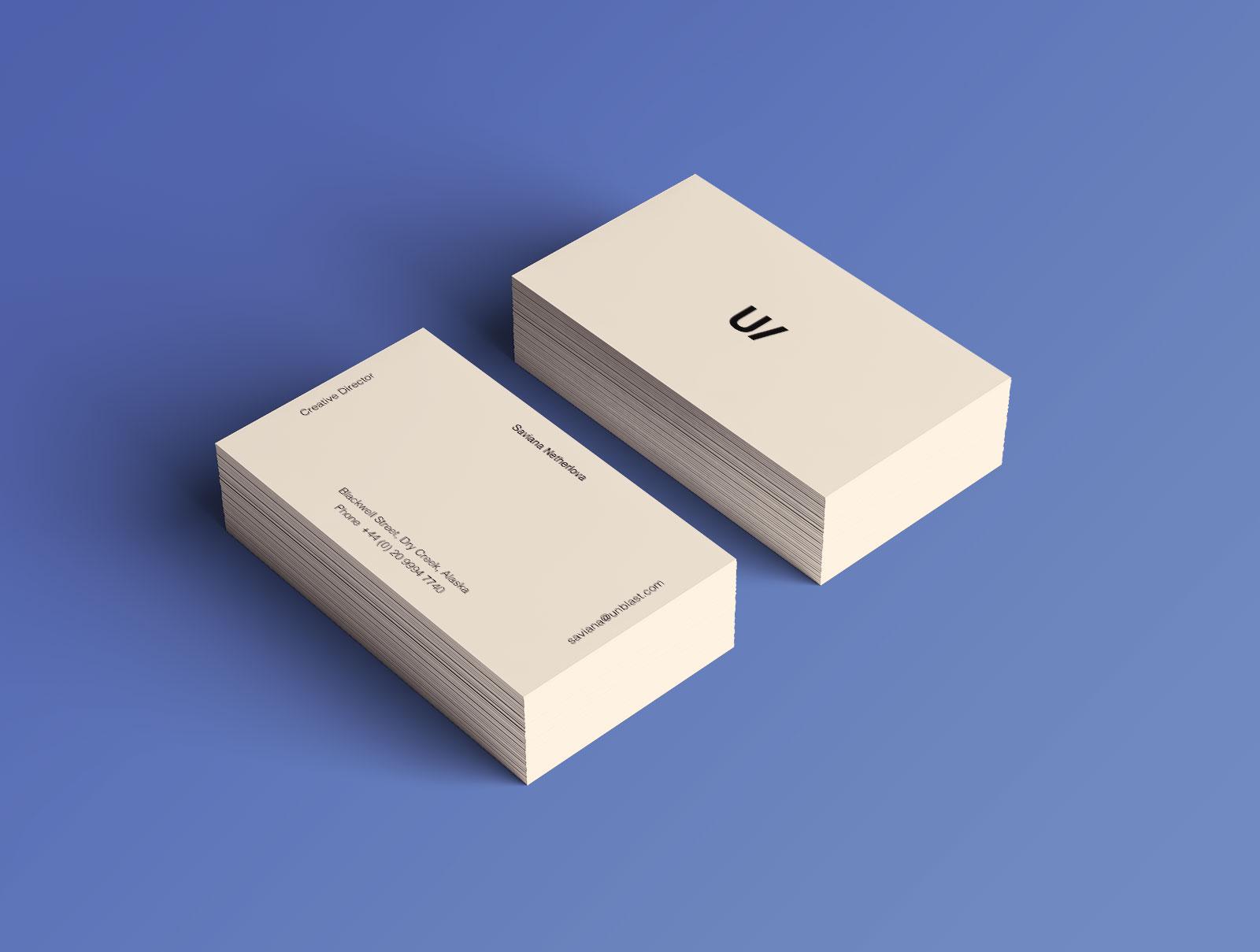 Free Professional Premium Corporate Identity Mockup PSD Set (5)