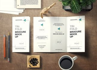 Free-Creative-Presenation-of-Tri-Fold-Brochure-Mockup-PSD