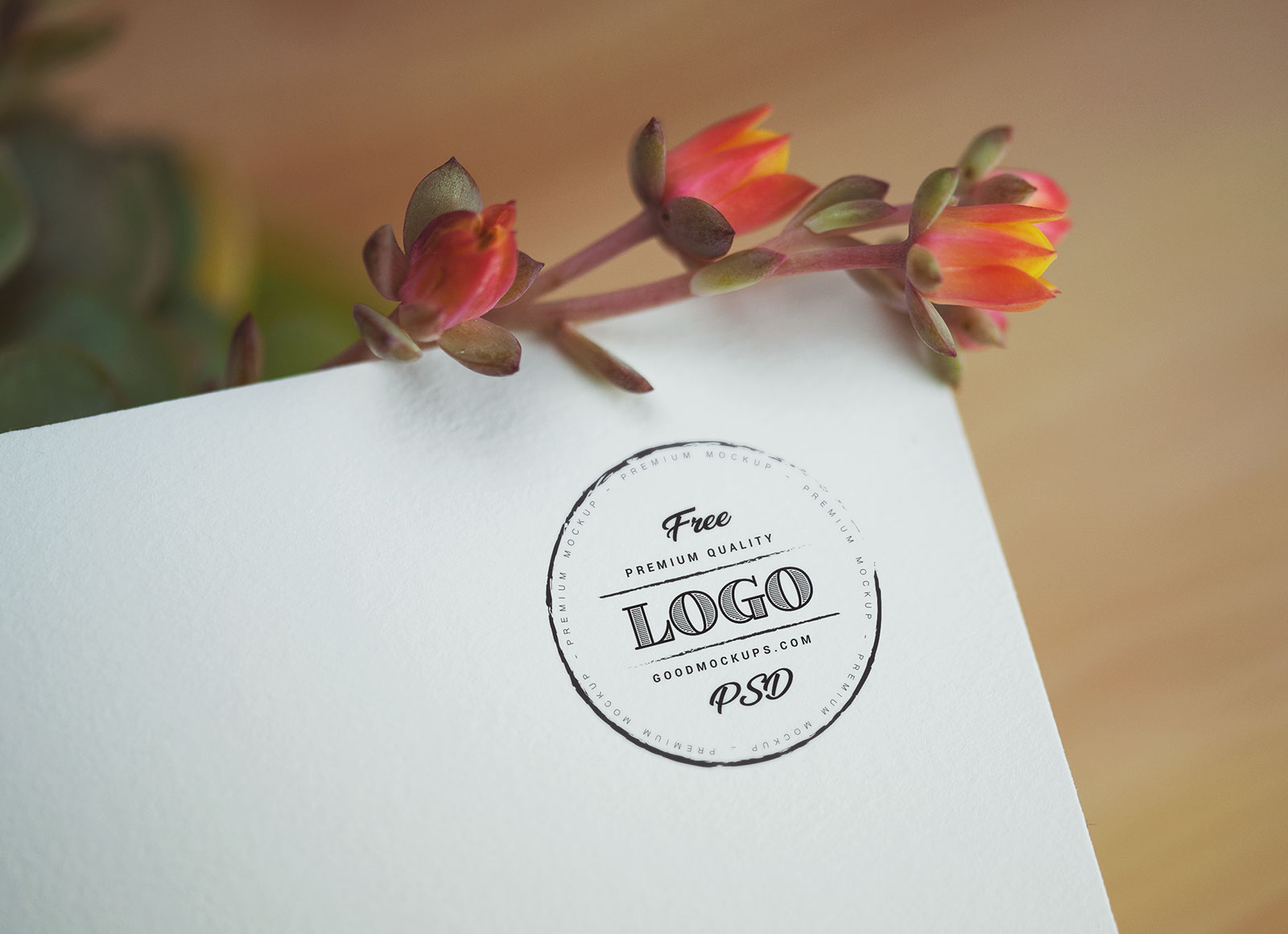 Free-Decorative-Logo-Mockup-PSD