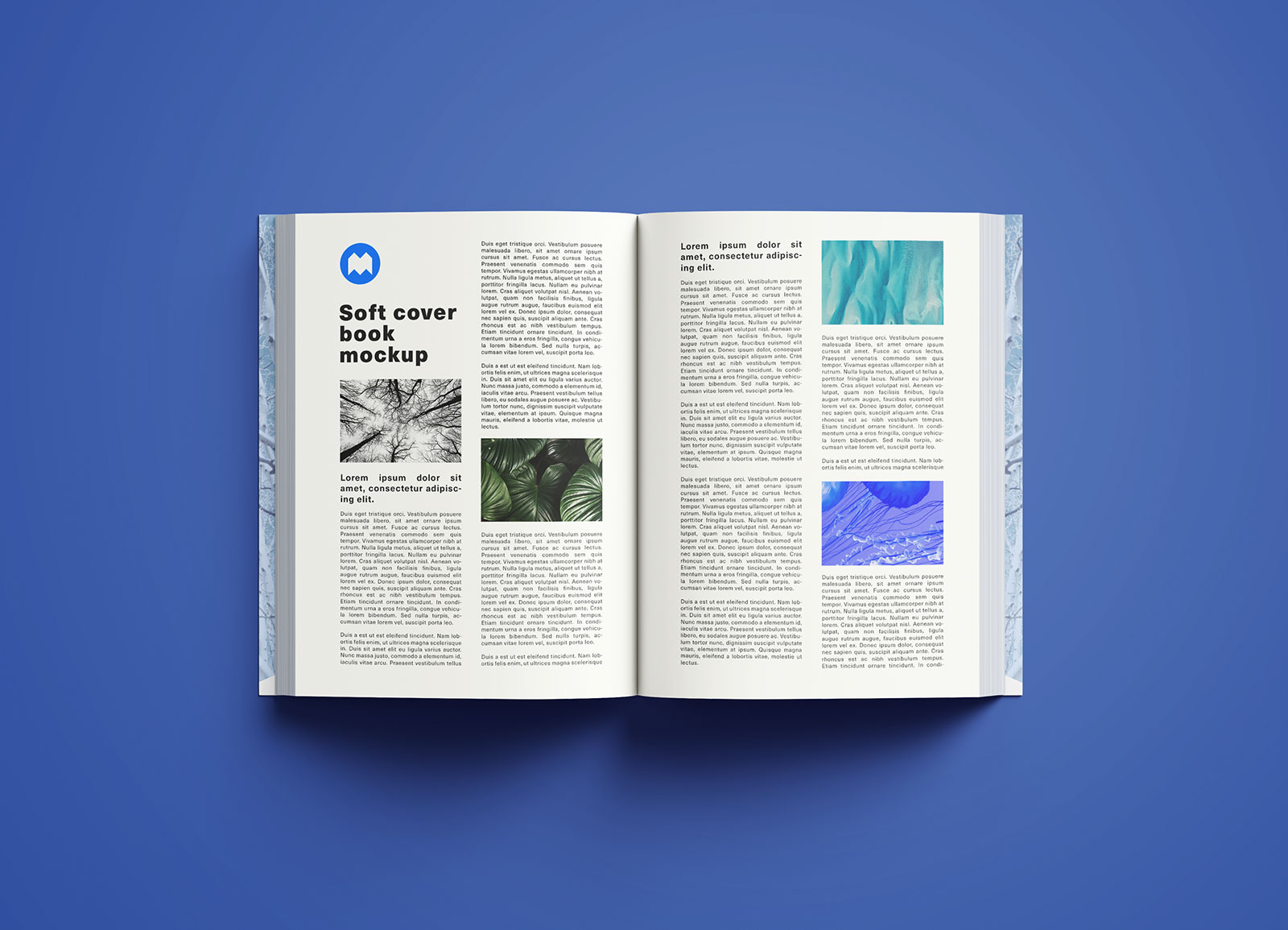 Softcover Book Mockup PSD (8)