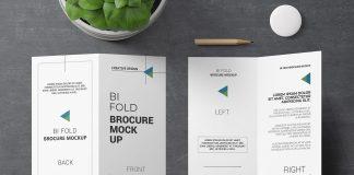 Free 2 Fold Brochure Mockup PSD