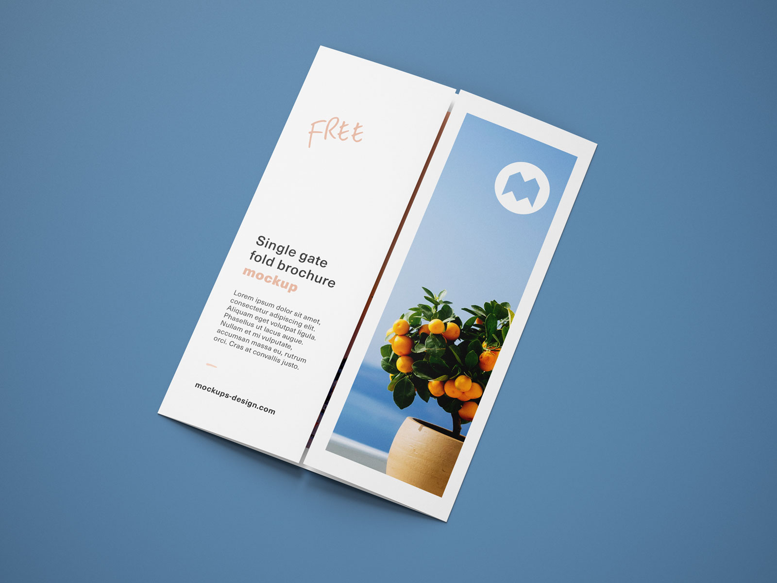 Free-Single-Gate-Fold-Brochure-Mockup-PSD-Set-9