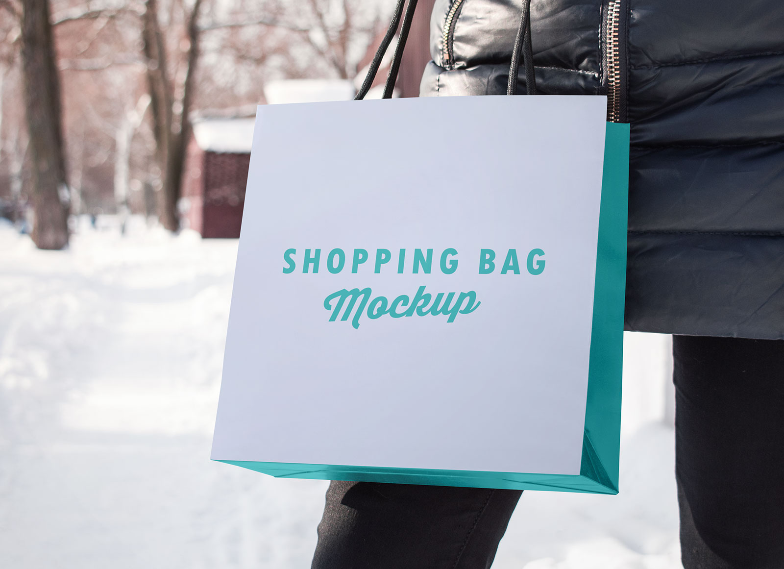 Free-Paper-Shopping-Bag-Photo-Mockup-PSD