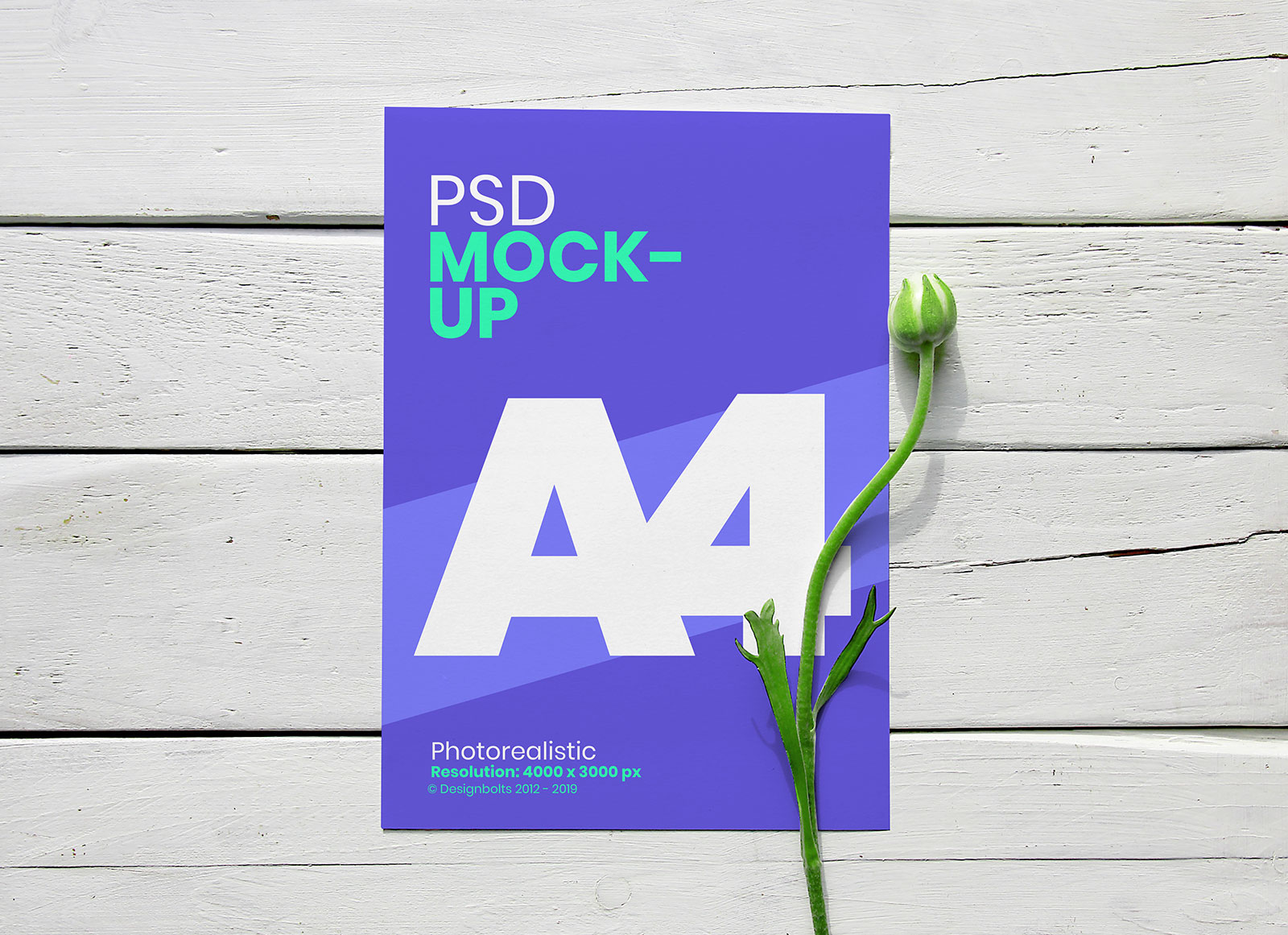 Free-A4-Flyer-with-Flower-Mockup-PSD