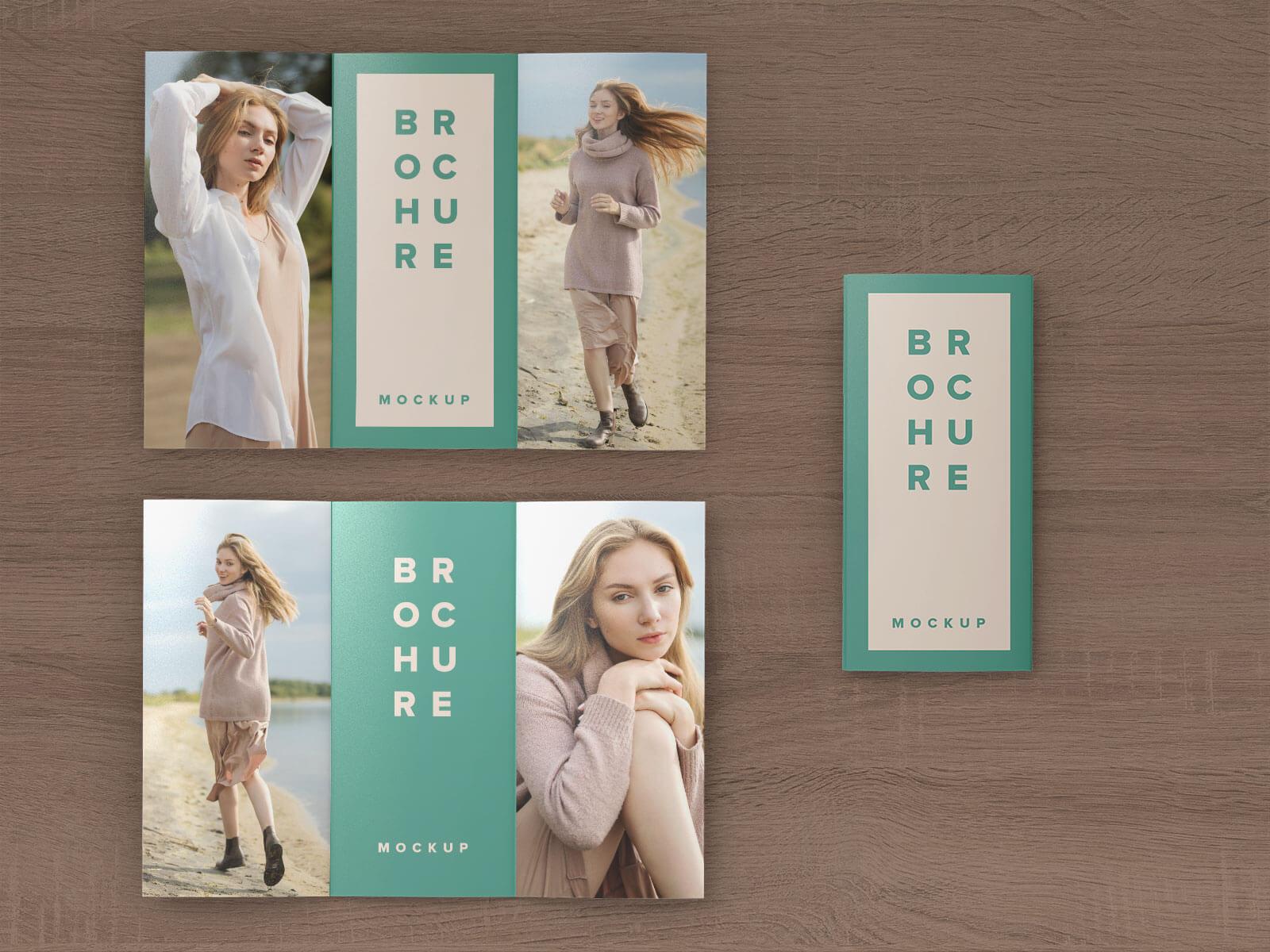 Best Free Tri-Fold 3 Panel Brochure Mockup PSD Set (1)