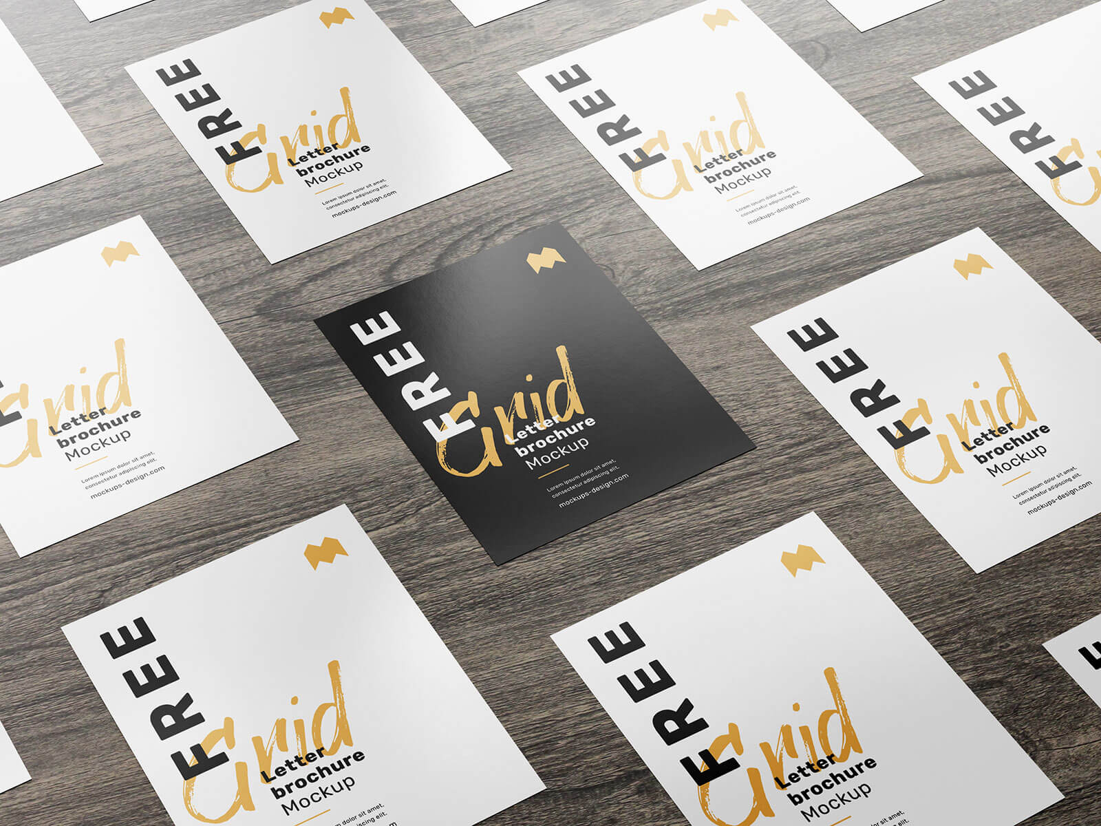 Free_Double Sided US_Letter_Brochure_Flyer Mockup_PSD Set (1)