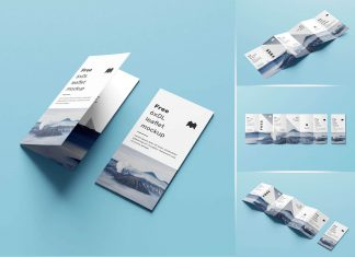 Free-6-Fold-Brochure--Leaflet-DL-Mockup-PSD-Set-5