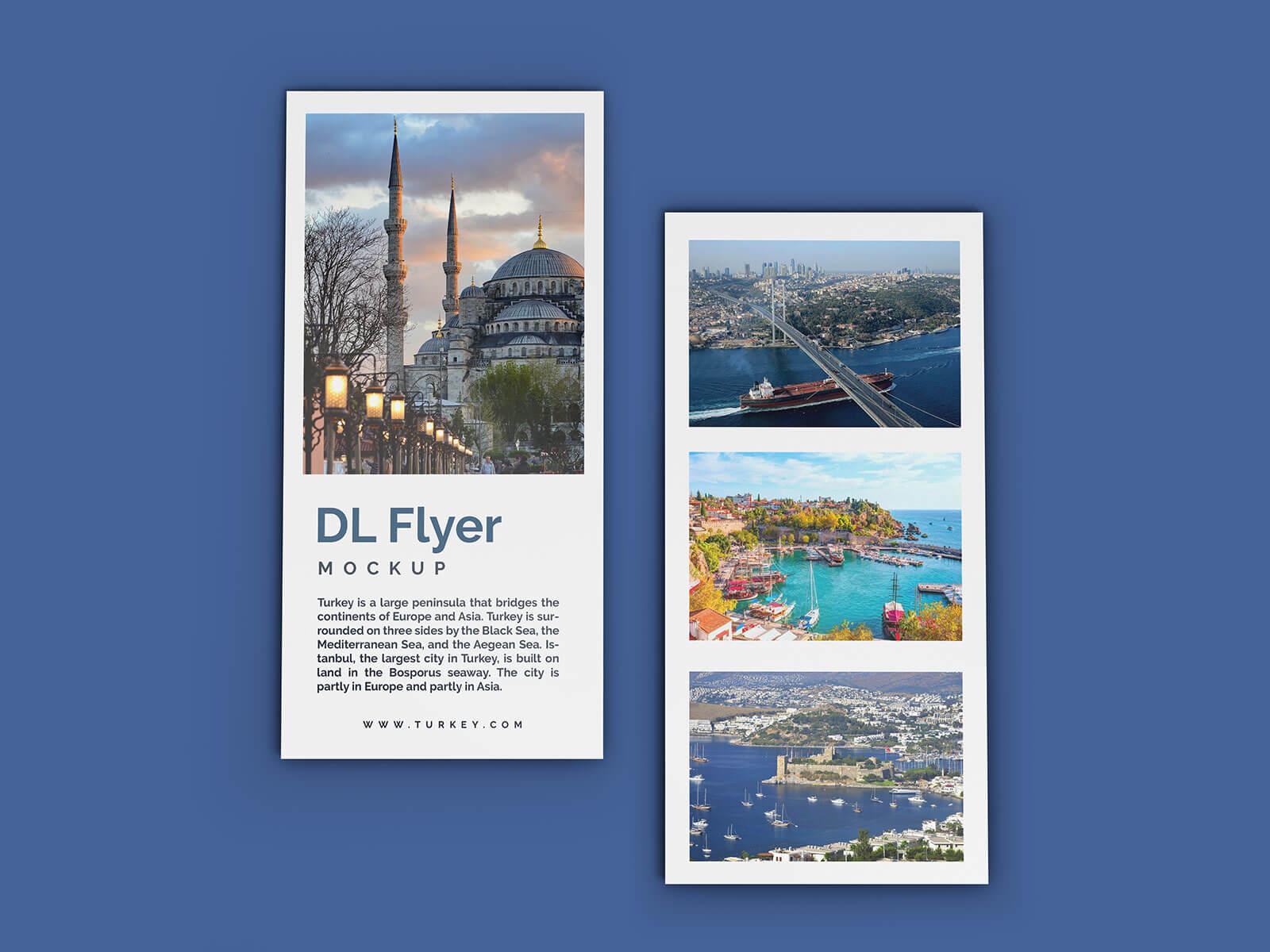 Free DL Flyer Leaflet Mockup PSD Set (1)