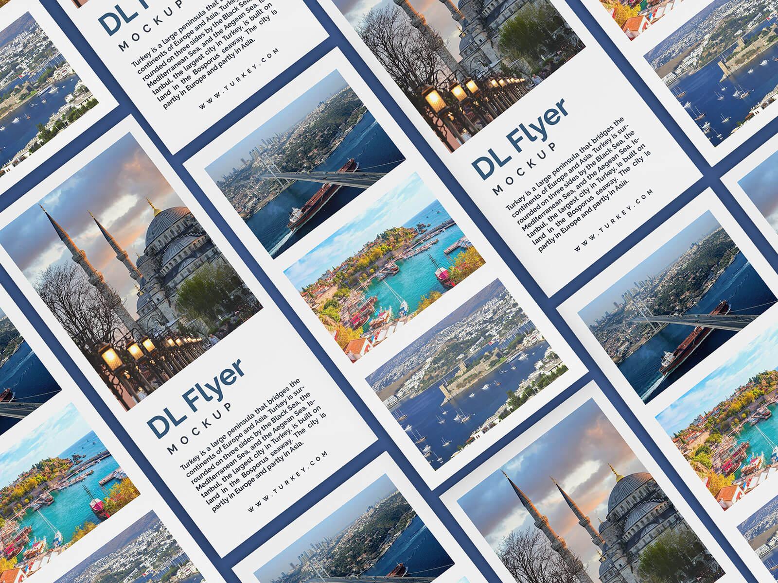 Free DL Flyer Leaflet Mockup PSD Set (3)