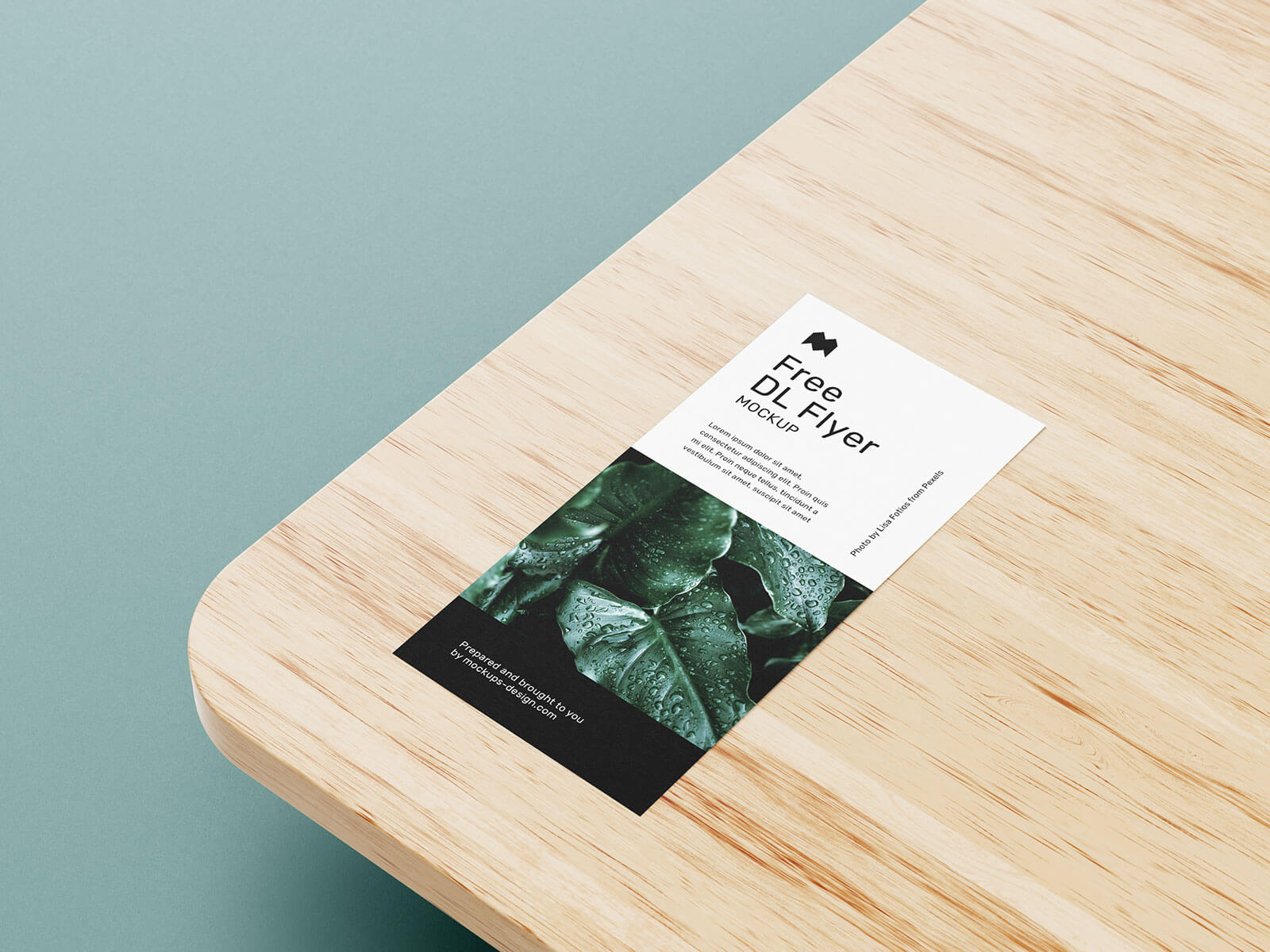 Free DL Flyer Leaflet Mockup PSD Set (6 Templates) (1)