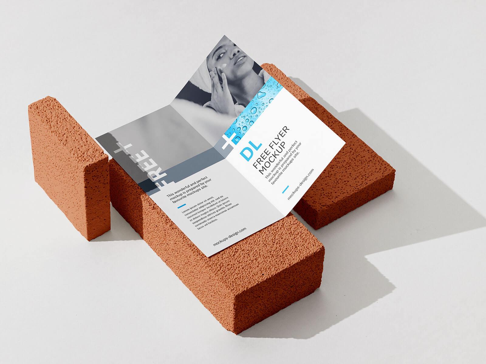 Free High Quality Bi-Fold Brochure Mockup PSD Set (1)