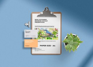 Free-Letterhead-&-Business-Card-Stationery-Mockup-PSD